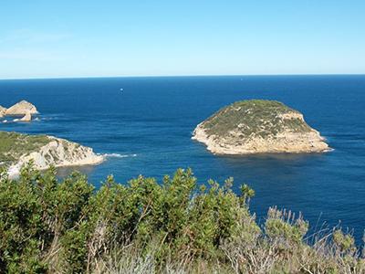 Die Insel Portitxol/Portichol